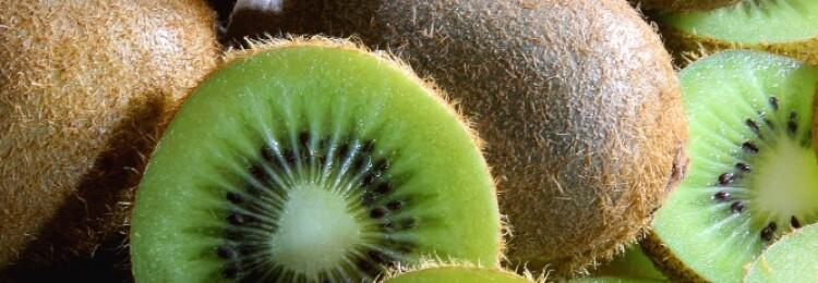 Киви: польза и вред для организма