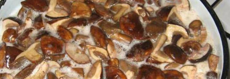 Сколько варить белые грибы перед жаркой? Правила приготовления белых грибов