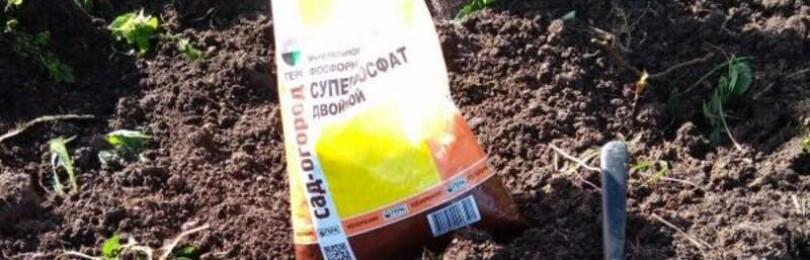 Суперфосфат: применение удобрения весной на огороде