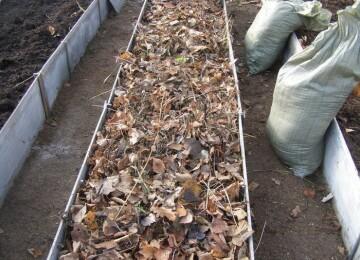 Как подготовить грядку осенью под посадку
