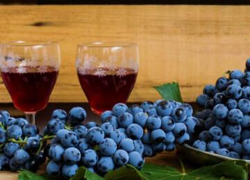 Как сделать вино из домашнего винограда Изабелла