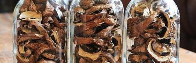 Как хранить грибы в домашних условиях
