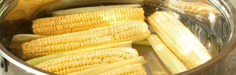 Сколько варить кукурузу в початках