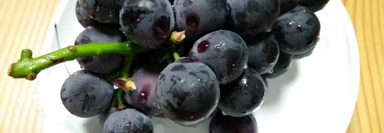 Виноград это ягода или фрукт?