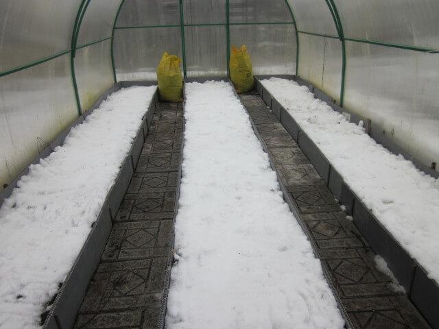 В теплице к концу зимы должен оставаться снег