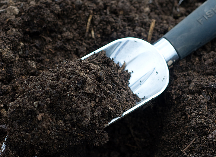 Чернозем - наиболее подходящая почва для клубники